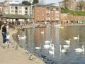 Exeter-Quay-9-high-res-C-Dominic-Lowther